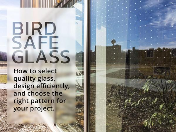 Bird Safe Glass – design rules to meet your budget and minimize bird collisions